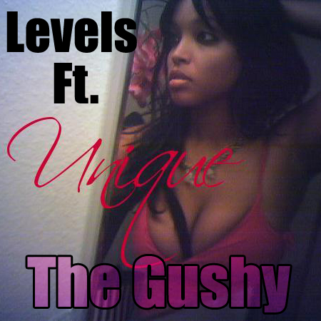 Levels ft. Unique- The Gushy